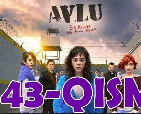 Hovli Turk seriali 43-qism O'zbek tilida tarjima kino HD